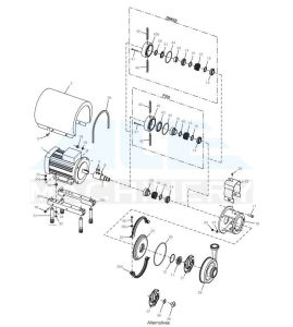 De Pomp van de Mixer van de Homogenisator van de Stroop van de geneeskunde (ace-rhb-B5)