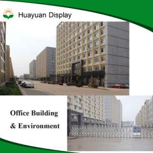 9'' haute qualité de la Chine TFT LCD affichage TV LCD
