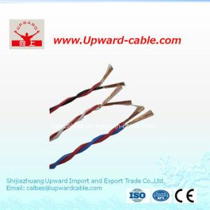 Com isolamento de PVC flexível torcido duplo fio de alimentação elétrica