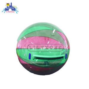 La phase de marcher à taille humaine à bille Hamster Ball Ballon de marche de l'eau