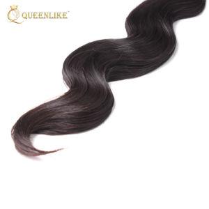 Nouveau design La couleur du produit 10un Brésilien Cheveux (FDXI-BB-009)