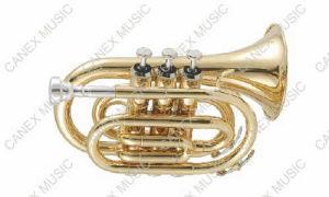 Trompette Pocket d'entrée de gamme (PTR-L)/trompette Pocket