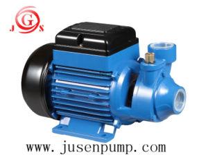 OEM 상표 220V 750W 최대 상승 6m 잠수정 수도 펌프