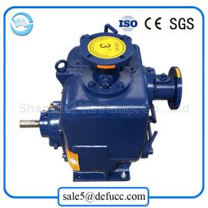 Elektromotor-Enden-Absaugung-Selbstgrundieren-Feuerschutzanlage-Pumpen-Hersteller