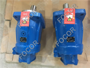 Rexroth hydraulische Kolbenpumpe A2fo200/63r-Pbb05