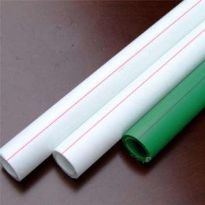 Nuevo Material Tubos de suministro de agua fría caliente PPR el tubo de agua de plástico