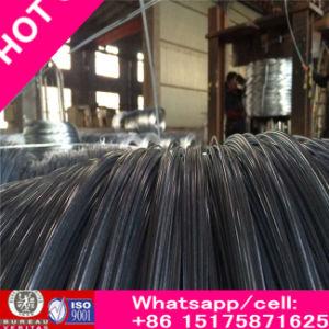 直径0.3に販売のための4mmが付いている豊富な電流を通された鋼線使用された足場
