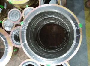 De spiraalvormige Pakkingen van de Wond met Binnen BuitenRing (ASME B16.20)