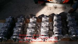 Ladevorrichtungs-Zahnradpumpe Ass'y Fertigung ~OEM KOMATSU-Wa600 705-55-43040 Selbstkomatsu-Ersatzteile