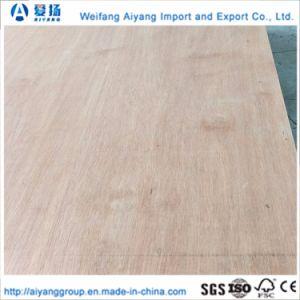 Reparación de 28 mm de suelo de madera contrachapada de contenedor y contenedores de madera contrachapada de piso