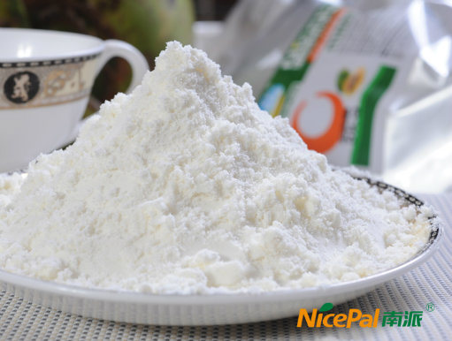Natural Spray Dried Coconut Powder / Coconut Milk Powder / Coconut Juice Powder