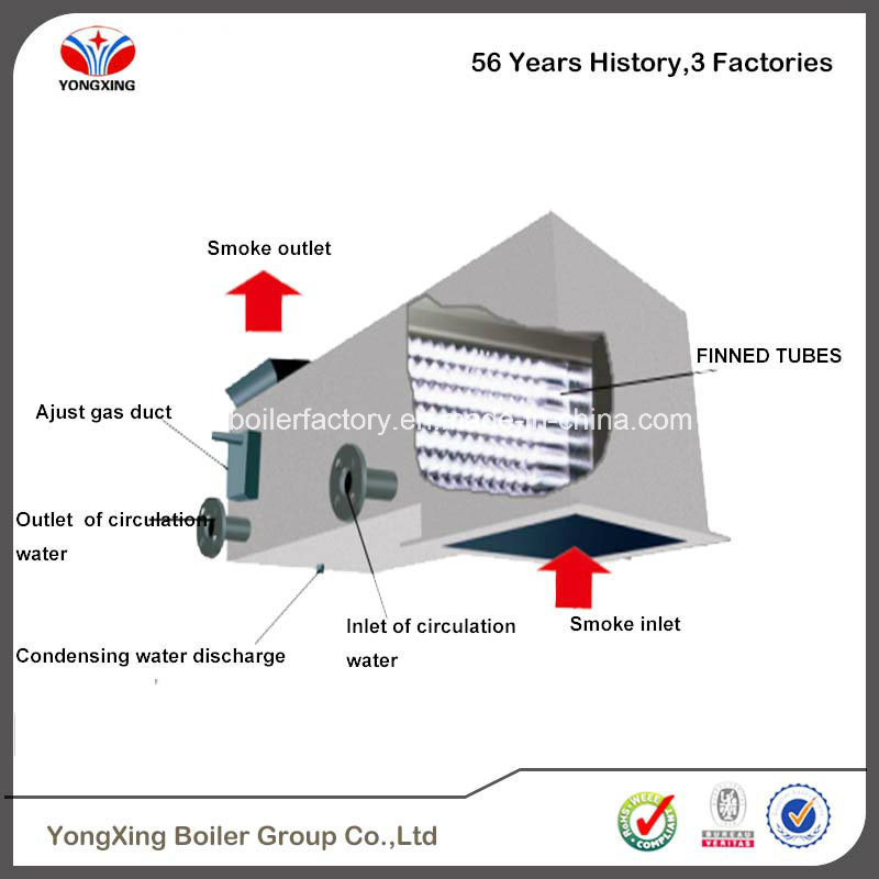 Big Heating Area 6ton/H Gas Condensing Steam Boiler - China Gas ...
