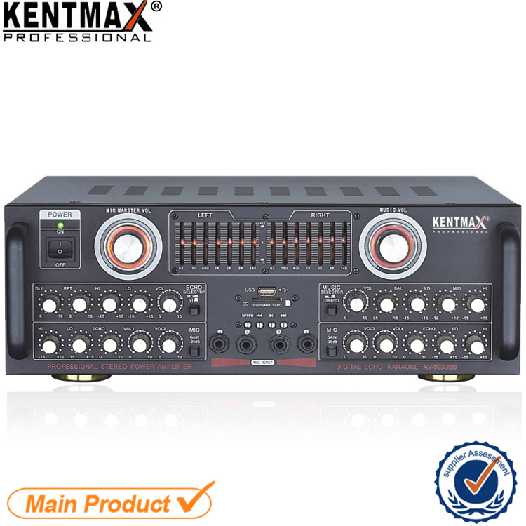 [Hot Item] Sound Standard Professional Home Type 100 Watt Power AMP
