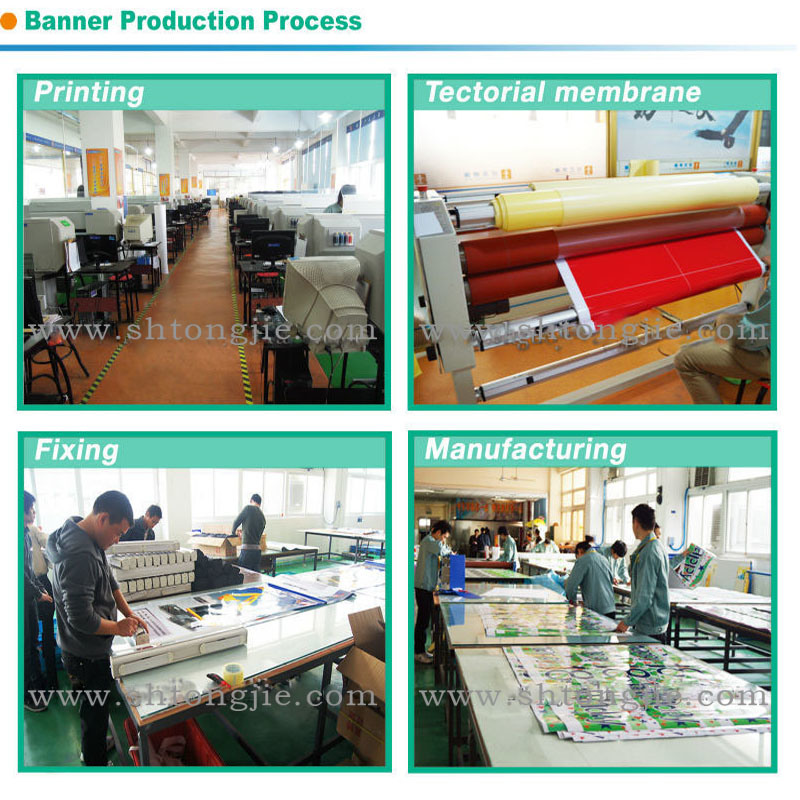 Customed Roll up Banner, Pull up Banner for Promotion (TJ-015)