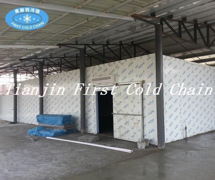 Nouveau design chambre froide stockage pour fruits et for Temperature chambre froide fruits et legumes