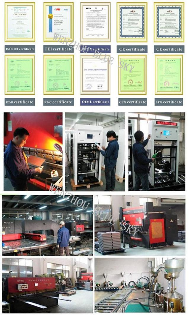 Rt-LNG112 LNG Dispenser for Gas Station Made in China