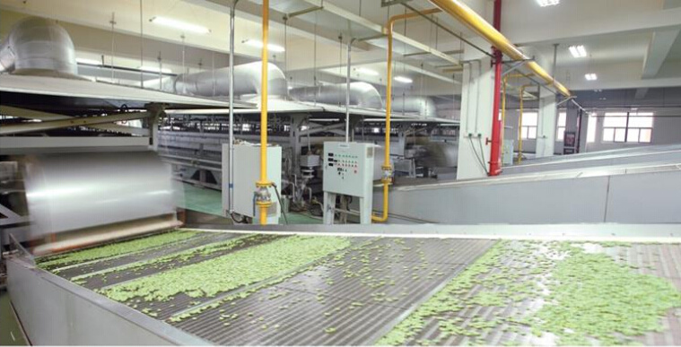 Natural Green Food Peas with Wasabi Flavor OEM Service