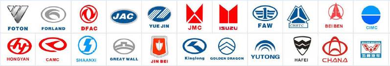 Foton/Forland Auto Parts / Spare Parts/Truck Parts