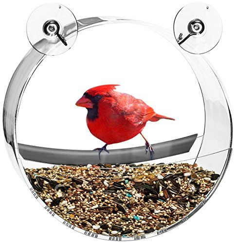 look for this particular windows bird feeder