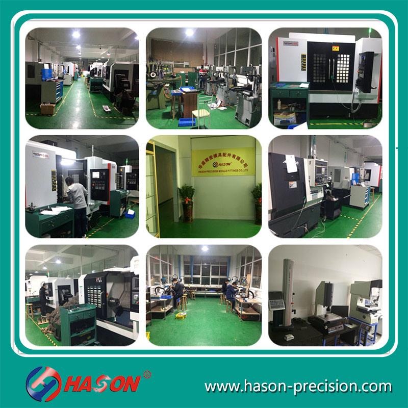 Hason Mold Precision Spare Parts for Auto Mould