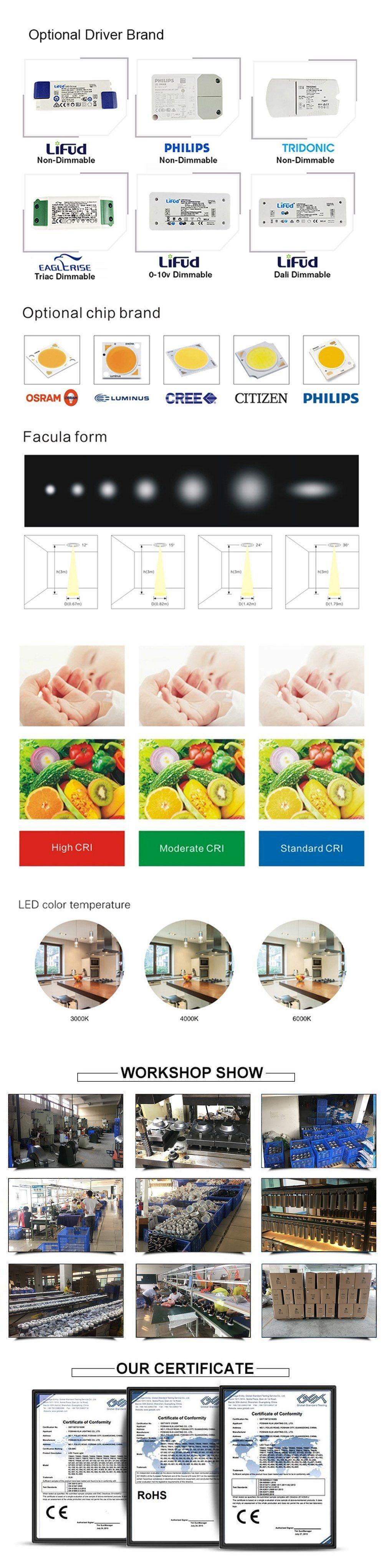 Ronus LED COB 25W Spotlight Rough Stretch Spot Light Lamp Ceiling Indoor Lighting Downlight