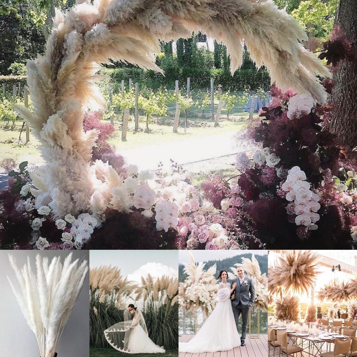 Natural Plants Dried Pampas Grass Reed Flower Bunch Wedding Decor Flower Arrangement Boho Bohemian Home Decor Feather Bouquet