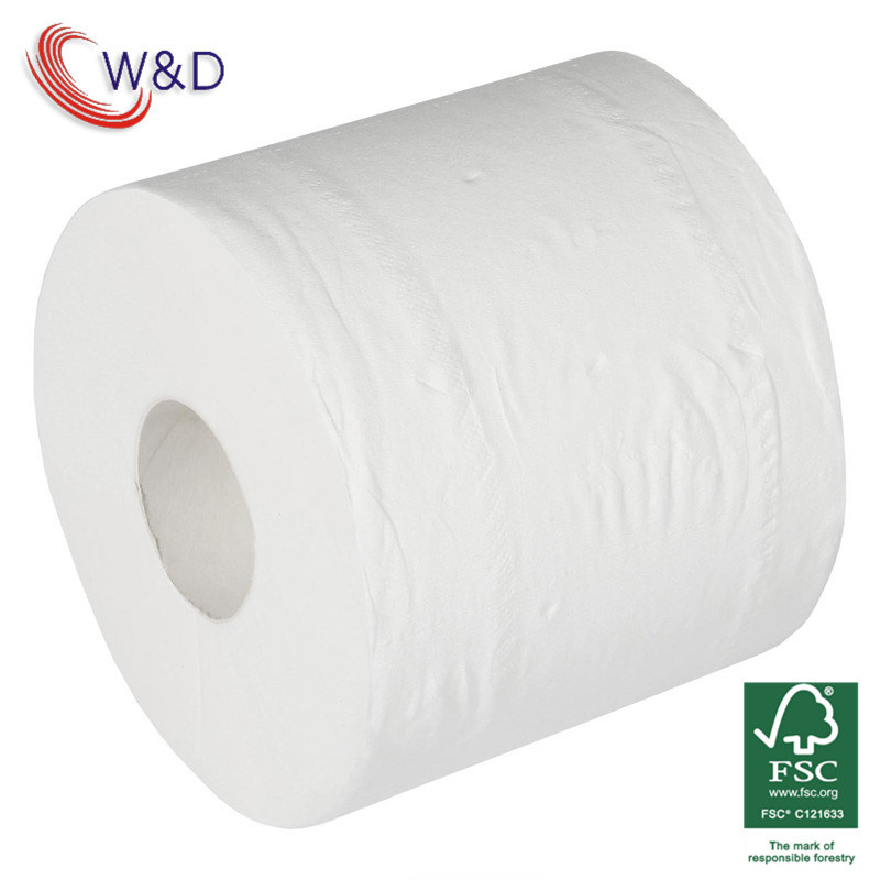 Toilet Paper From China