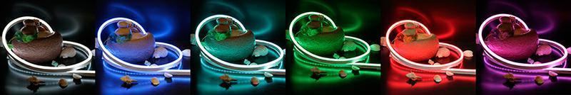 Ultra Thin LED Neon Flex Light DC12V 24V 110V 220V