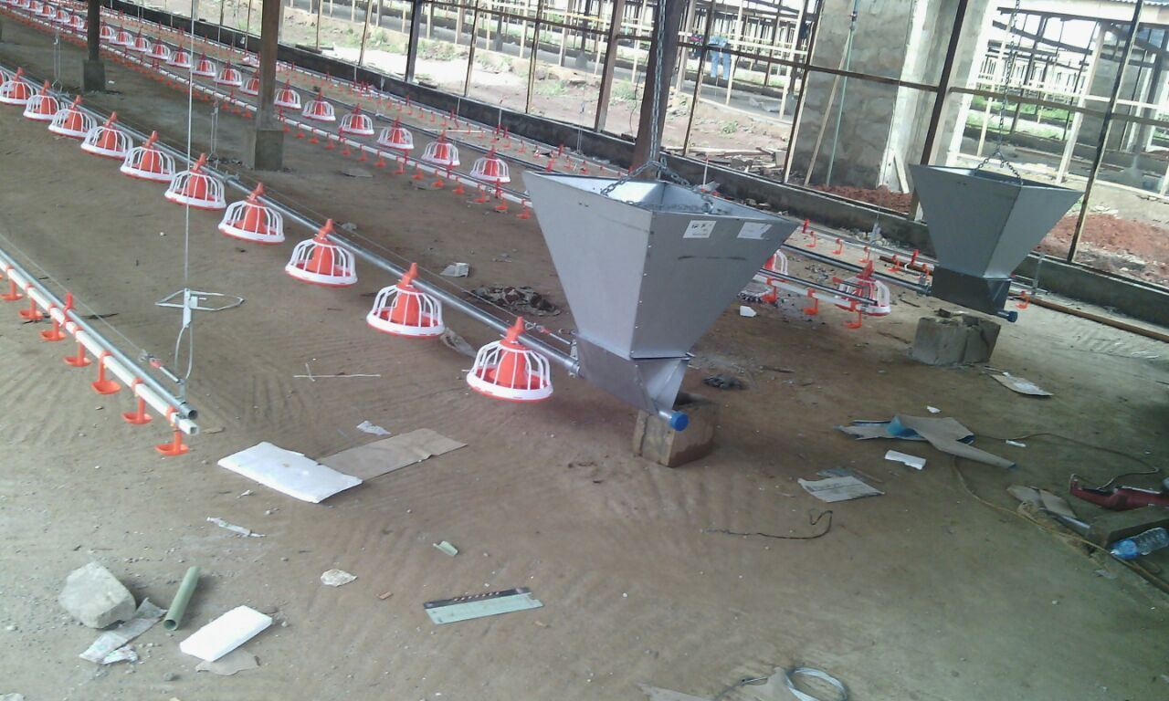 Automatic Poultry Farm Equipment for Broiler Chicken/Breeder Chicken and Layer Chicken