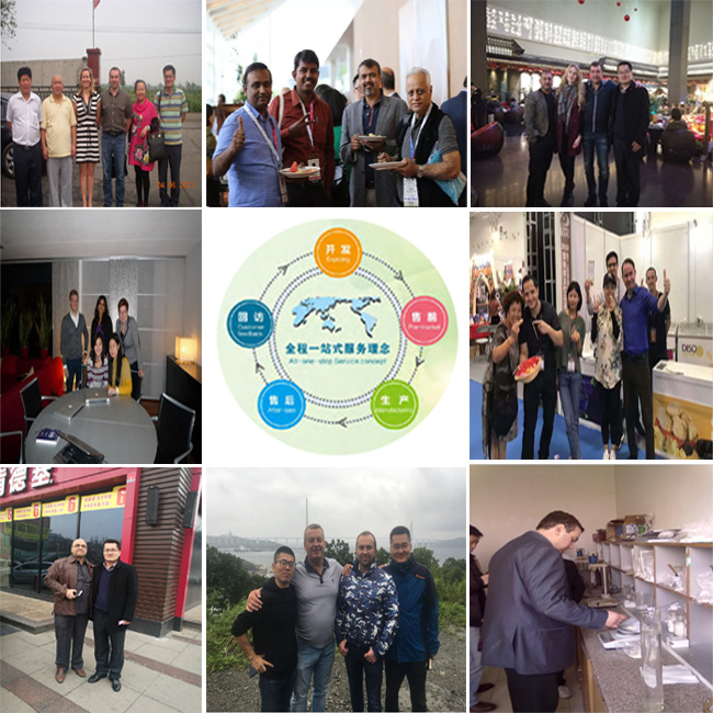Factory Supply Good Quality CMC From China
