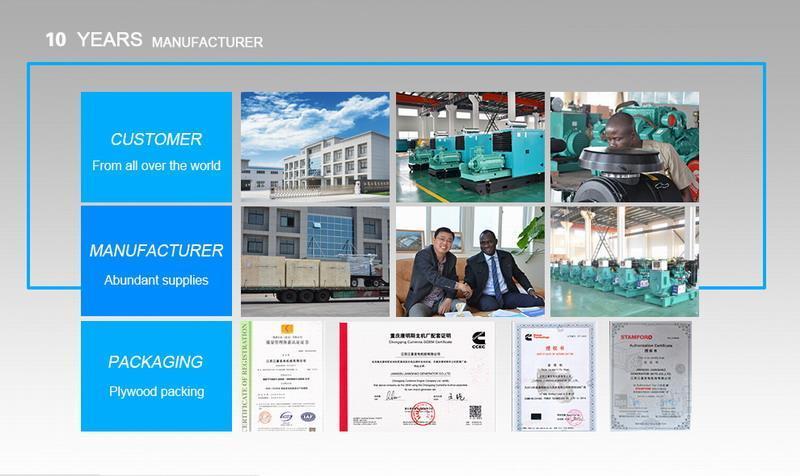 China Diesel Engine Manufacturer 4b3.9-G1 Engine Factory Supplier