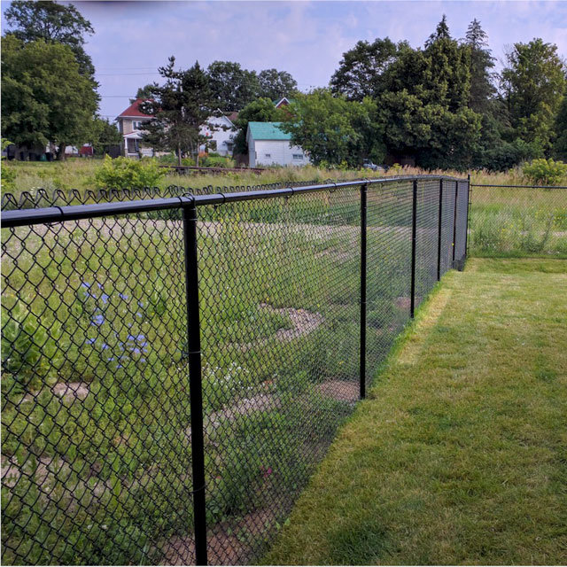 Black PVC Coated and Galvanized Vegetable Garden Chain Link Fence