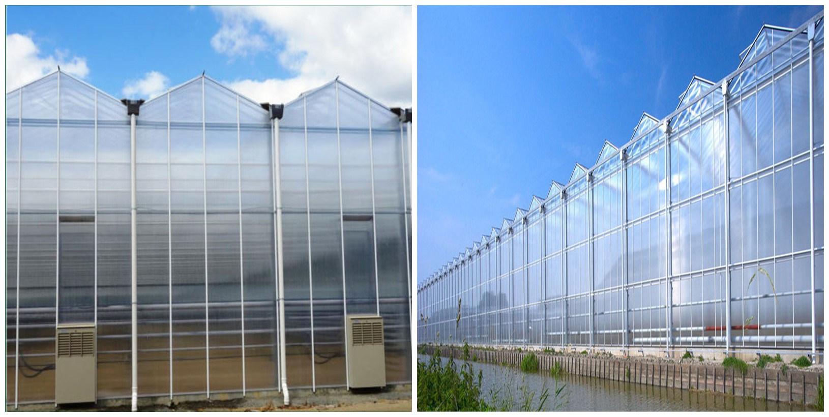 Agriculture Productive Multi-Span Plastic Film Greenhouse for Melon/Tomato/Strawberry/Cucumber/Garden Cultivation