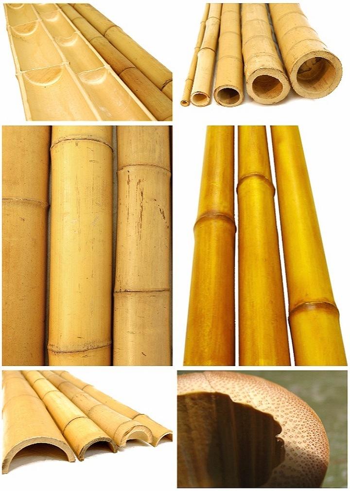 Il piccolo pacchetto di pali di bamb comercia nella for Vendita bambu