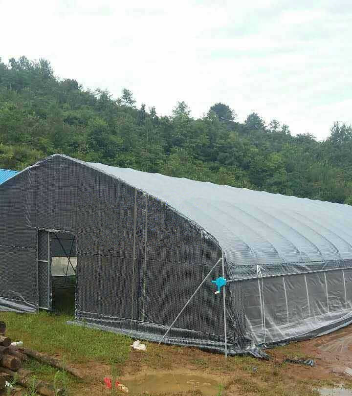 [Hot Item] Plastic Woven Membrane Tunnel Greenhouse for Chicken  House/Animal Husbandry and Aquaculture