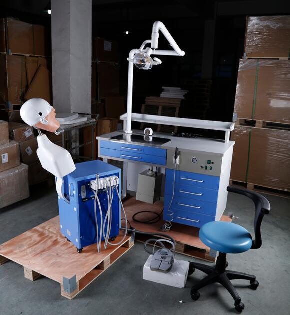 Simulateur de soins dentaires pour l éducation et de test,tête fantôme  simulateur de formation en soins dentaires. Modèle   mct-V 82da029bb747