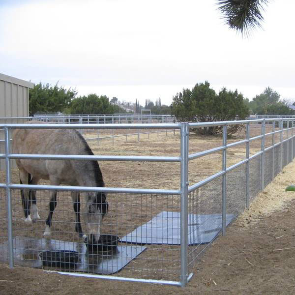 Welded Wire Mesh Livestock Fence Horse Panels  - China Livestock