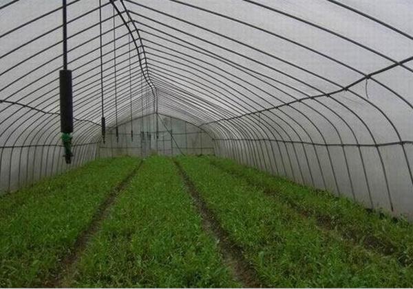systeme d irrigation agricole pdf