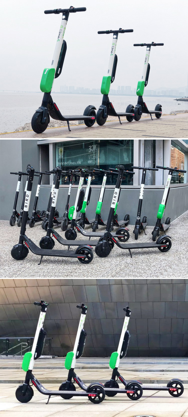 Segway Top Speed 30km H Original Bird Sharing Electric Scooter Ninebot Es4 Two Wheel Foldable Lime Sharing Scooter China Sharing Scooter And Electric Scooter Sharing Price Made In China Com