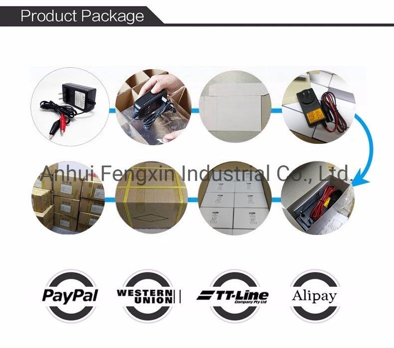 3s 12.6V 5A 6A 7A 8A 9A Li-ion/Lithium/Lithium Polymer Battery Pack Smart /Universal Charger for 11.1V Battery