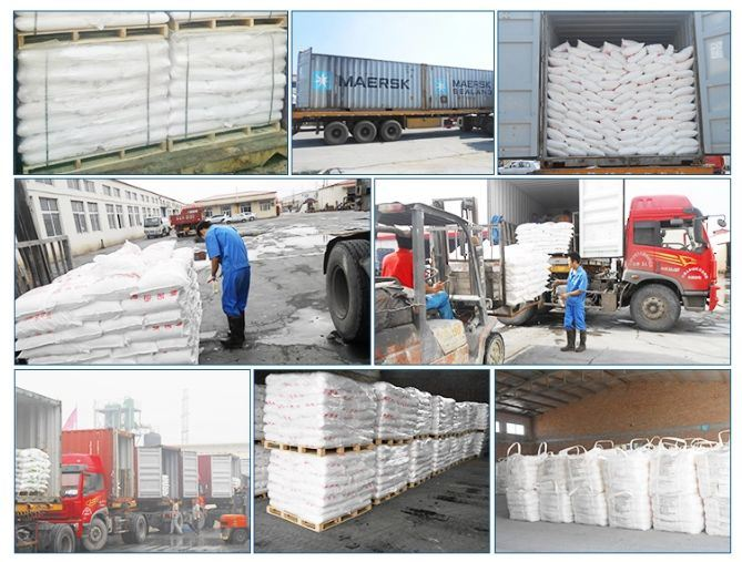 China Zinc Sulphate Heptahydrate/Monohydrate Best Quality