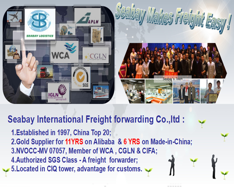 Best Logistics Service From China to USA - China Cheap Ocean