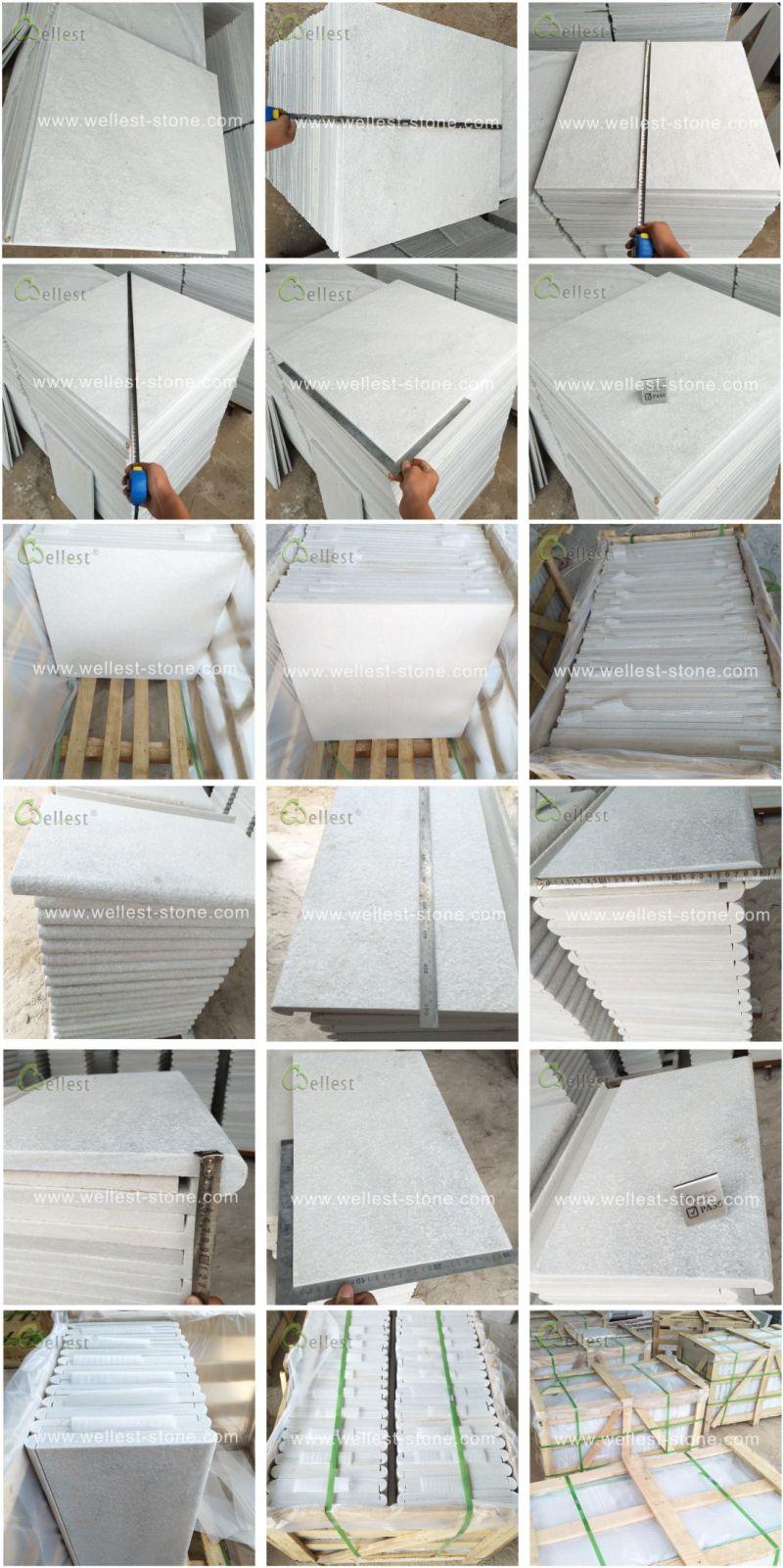 Alle Produkte zur Verfügung gestellt vonShenzhen Wellest Industry Inc.