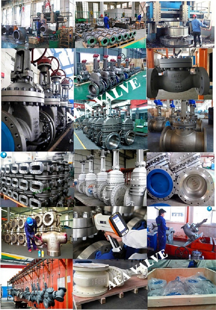 Hand Wheel Manual API 600 Stellite Trim Renewable Seat Bolted Bonnet Flexible Wedge Solid Wedge Gate Valve