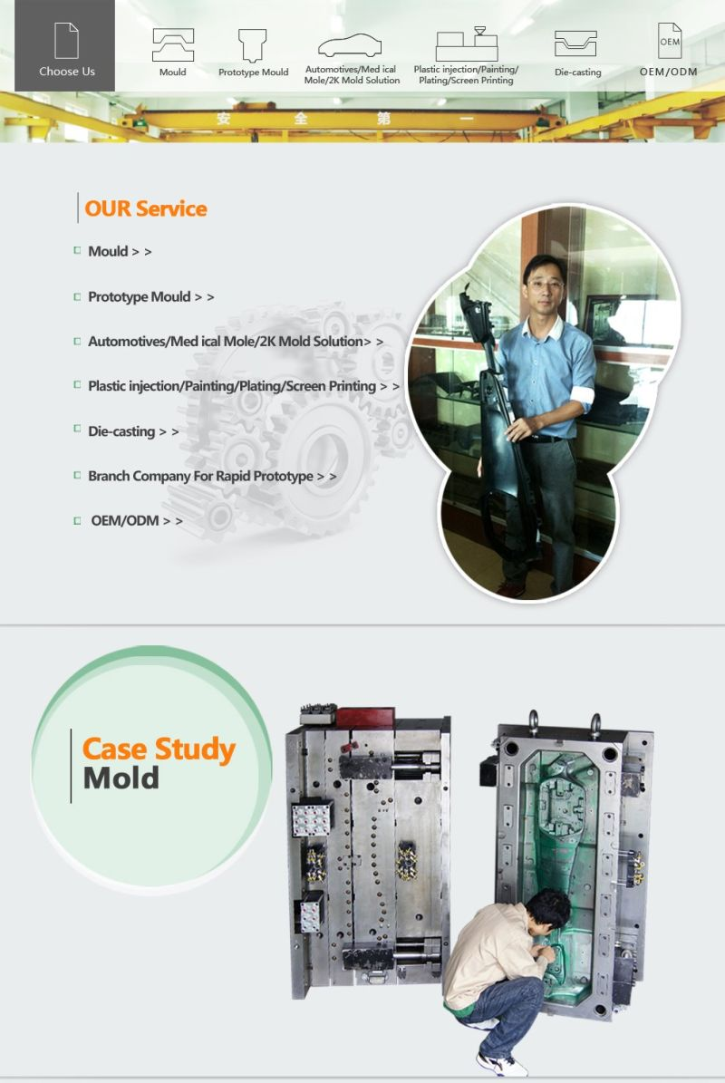 ISO 14001: 2008 D&B Certification EPP Foam Injection Mould