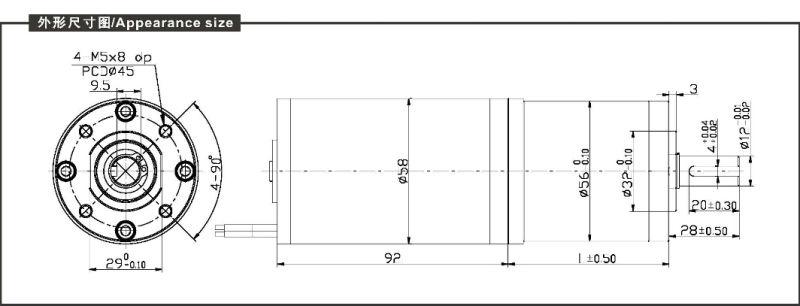 DC Planetary Gear Motor (PG36555)