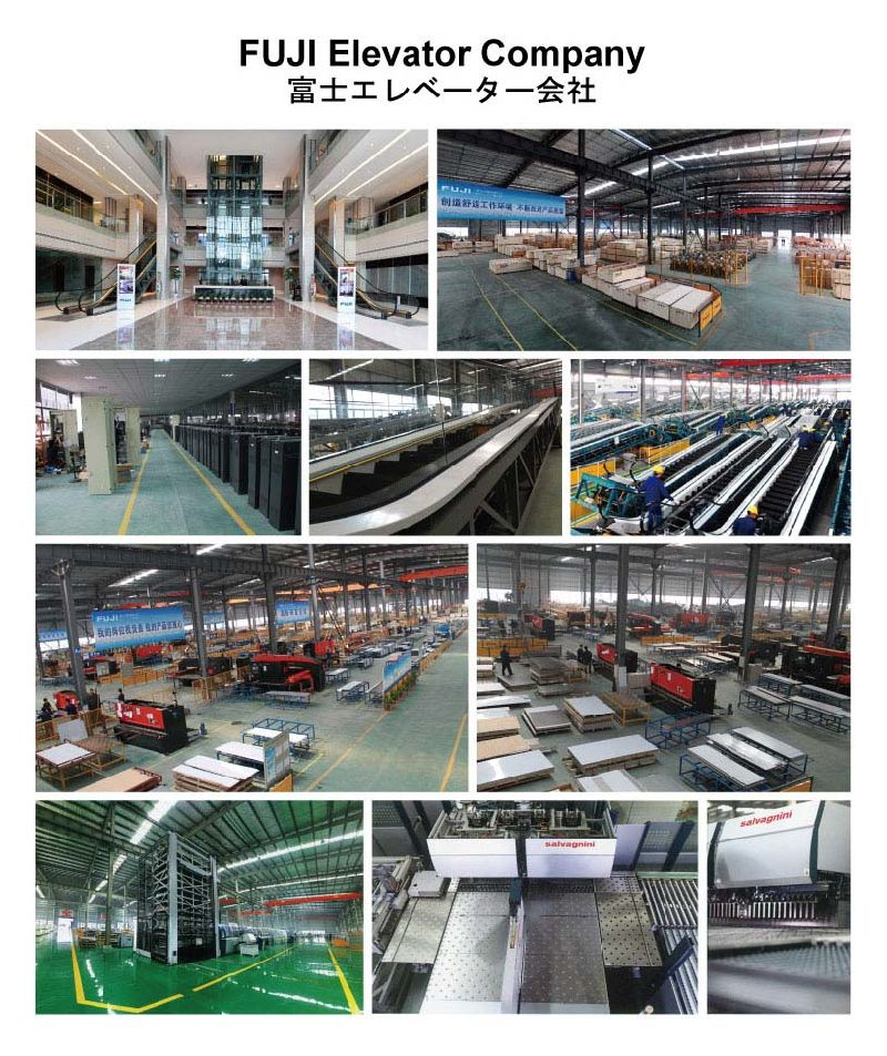 China fuji home elevator lift for sale hd bt05 china for House elevator for sale