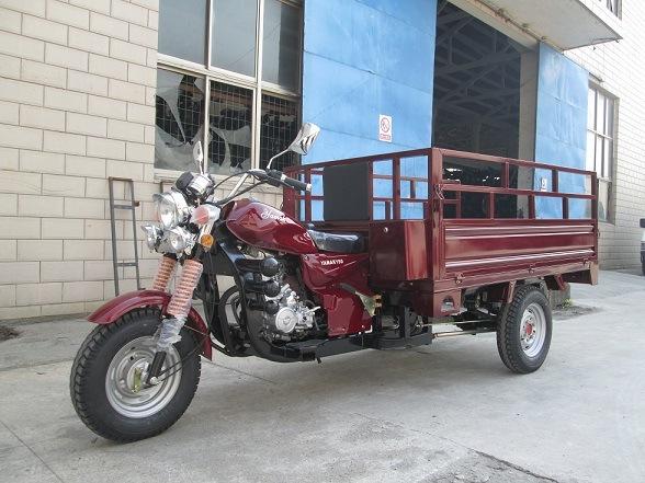 China Campagna T Rex Trike Three Wheel Motorcycle 150cc China