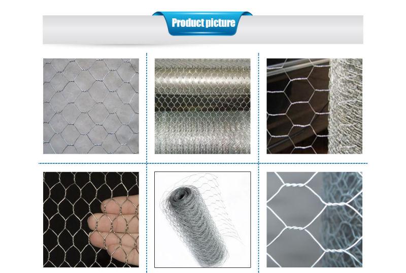 China Hexagonal Wire Mesh Netting, Gabion Mesh - China Hexagonal ...