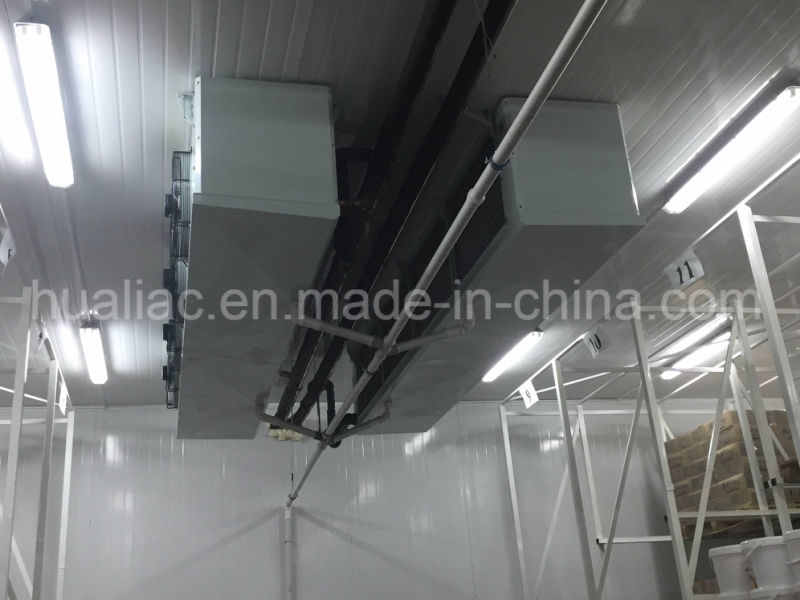 Air Cooled Condensing Unit for Fruit/Meat/Fish Cold Storage Room